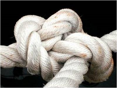 Perdão, aceitação e Limites. O cordão de três dobras da restauração!